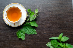 Aromatic organic natural herbal tea from the nettle leaves royalty free stock image