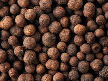 Aromatic pepper corns background Royalty Free Stock Photos