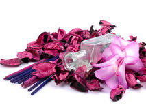 Aromatic pink composition Royalty Free Stock Photos
