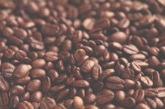 Aromatic roasted coffee background close up royalty free stock photography