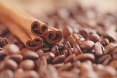 Aromatic roasted coffee beans sticks of natural cinnamon on background close up royalty free stock photos