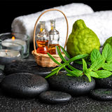 Aromatic spa ακόμα ζωή του ουσιαστικού πετρελαίου μπουκαλιών, φρέσκια μέντα, ro Στοκ Φωτογραφίες