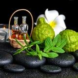 Aromatic spa του ουσιαστικού πετρελαίου μπουκαλιών στο καλάθι, φρέσκια μέντα, ros Στοκ Εικόνες