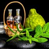 Aromatic spa του ουσιαστικού πετρελαίου μπουκαλιών στο καλάθι, φρέσκια μέντα, ros Στοκ φωτογραφίες με δικαίωμα ελεύθερης χρήσης