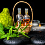 Aromatic spa of bottles essential oil in basket, fresh mint, ros Royalty Free Stock Image