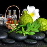 Aromatic spa of bottles essential oil in basket, fresh mint, ros Stock Photo