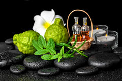 Aromatic spa of bottles essential oil in basket, fresh mint, rosemary, bergamot fruits, flower and candles on black zen stones stock image