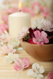 Aromatic SPA flowers and candle Stock Photography