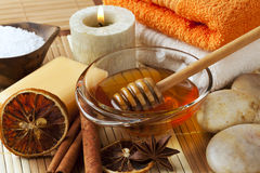 Aromatic spa ingredients Royalty Free Stock Images