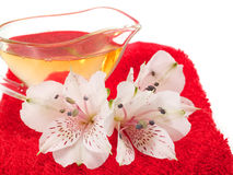 Aromatic spa oils Stock Images