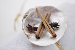 Aromatic spa spices. Aromatic spices displayed in a natural sea-shell - spa object Royalty Free Stock Photo