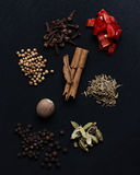 Aromatic Spice Blend. Selection of Aromatic Spices on Black Background Royalty Free Stock Photography
