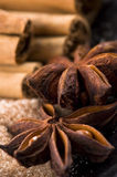 Aromatic spices with brown sugar Stock Images