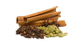 Aromatic spices Stock Image