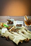 Aromatic spices and decoration for tea Royalty Free Stock Photography