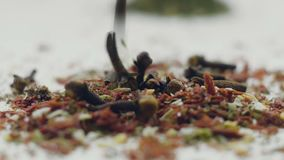 Aromatic spices, dried cloves and herbs. HD stock video footage