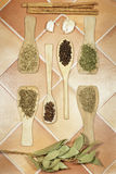 Aromatic spices of several kinds, herbs and seeds. Vertical view Stock Photography