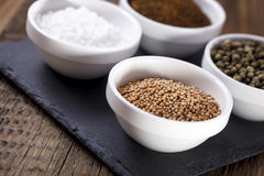 Aromatic spices in white bowls Royalty Free Stock Photography
