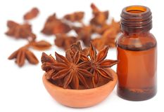 Aromatic star anise with essential oil in a bottle. Over white background royalty free stock photography