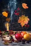 Aromas of autumn. Stock Photos