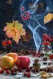 Aromas of autumn. Royalty Free Stock Images