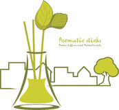 Aromatic sticks. Aroma diffusers and aromatic oils royalty free stock photos