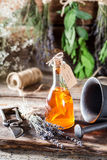 Aromatic tincture as natural medicine with herbs Royalty Free Stock Photography