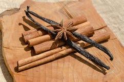 aromatic vanilla and cinnamon bark Stock Images