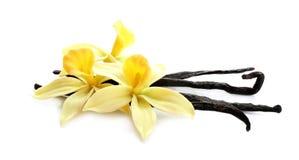 Aromatic vanilla sticks and flowers on white
