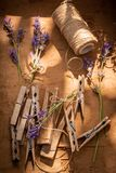 Aromatic and violet lavender in a summer garden. On wooden table royalty free stock image
