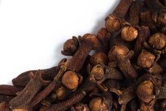 Aromaticum van de kruidnagel macrosyzygie Stock Afbeelding