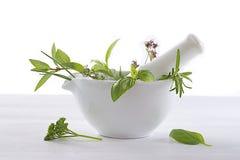 Aromatique et plantes médicinales dans un mortier photos stock