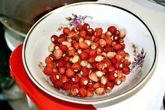 Aromatisch de aardbeien royalty-vrije stock foto