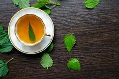 Aromatisch organisch natuurlijk aftreksel van de netelbladeren Stock Afbeeldingen