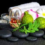 Aromatische Badekurorteinstellung der Bergamotte trägt, frische Minze, Rosmarin, c Früchte Stockfotos