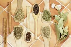 Aromatische Gewürze einiger Arten, als trockene Kräuter und Samen Stockfotografie
