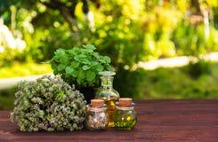 Aromatische Kräuter und ätherische Öle Natürliche Kosmetik Natürliche Medizin Pfefferminz und wohlriechender Thymian lizenzfreies stockfoto