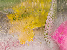 Aromatische organische Abstraktion von Chrysanthemen Lizenzfreie Stockbilder