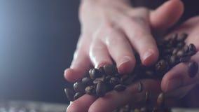 Aromatische Röstkaffeebohnen, die über einer Tabelle, Hände prüfen Qualität in der Zeitlupe gehalten werden stock video footage