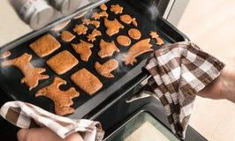 Aromatische zoete peperkoeken op bakselblad in een open hete stomende oven royalty-vrije stock afbeeldingen