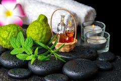 Aromatisches Konzept der Bergamotte trägt, frische Minze, Rosmarin, candl Früchte Lizenzfreies Stockbild