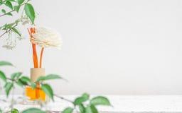 Aromatisches Reederfrischungsmittel, Duft-Diffusor-Satz der Flasche mit Aroma haftet die Reeddiffusoren auf weißem Wandhintergrun lizenzfreies stockbild