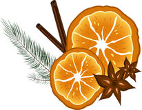 Aromatisk apelsin stock illustrationer