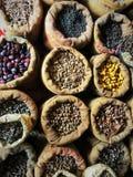 Aromatisk bild av kryddor i Indien royaltyfria foton