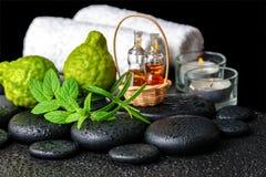 Aromatisk brunnsortstilleben av nödvändig olja för flaskor, ny mintkaramell, ro Royaltyfri Foto