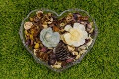 Aromatiska blommor i en vas formen av hjärta Bakgrund för dag för valentin` s Arkivbild