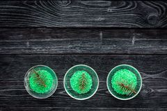 Aromatiska brunnsortskönhetsmedel Gräsplan sörjer brunnsorten som är salt på mörkt träutrymme för kopia för bästa sikt för bakgru Arkivbild