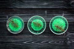 Aromatiska brunnsortskönhetsmedel Gräsplan sörjer brunnsorten som är salt på mörkt träutrymme för kopia för bästa sikt för bakgru Royaltyfri Foto