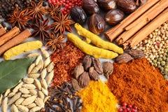 Aromatiska indierkryddor Arkivbild