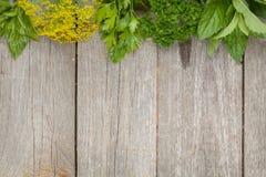 Aromatiska ingredienser på den wood tabellen med copyspace Arkivfoton